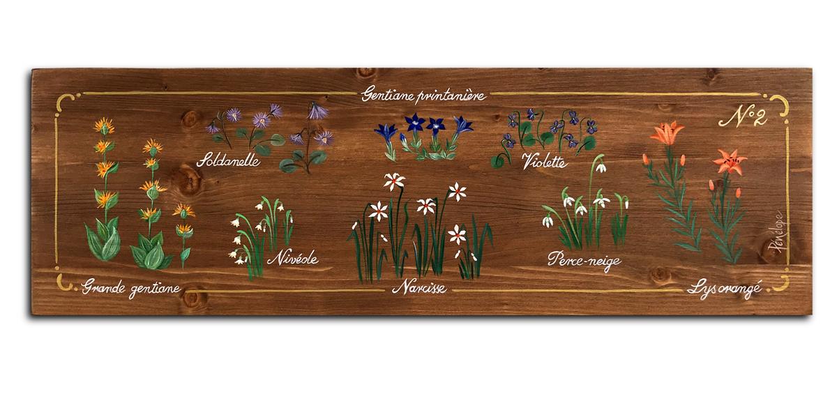 quelques fleurs des Alpes